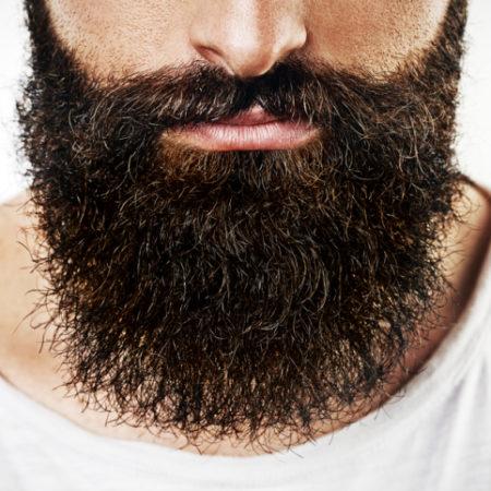 barba dura