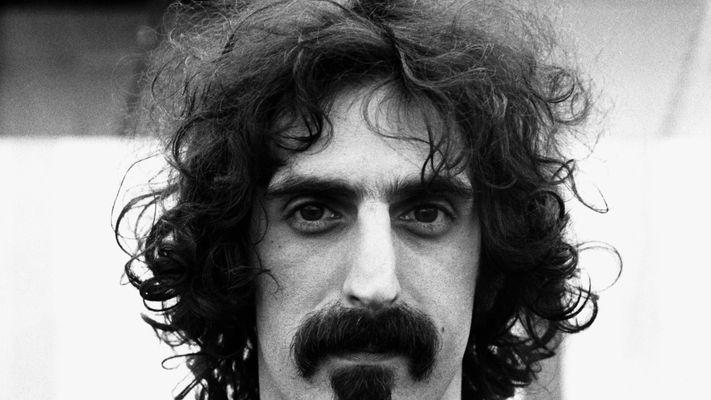 A barba de Frank Zappa