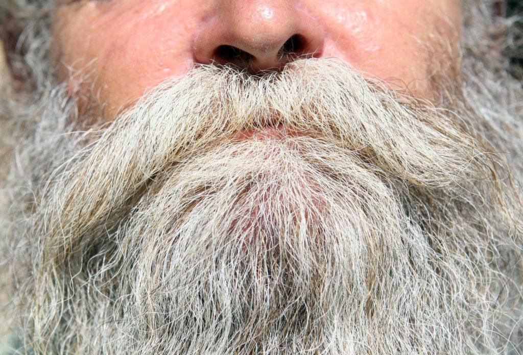 características da barba branca
